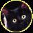 черный_кот